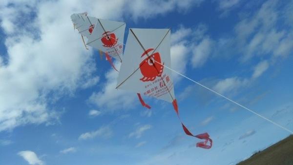 蛸と凧・コラボ